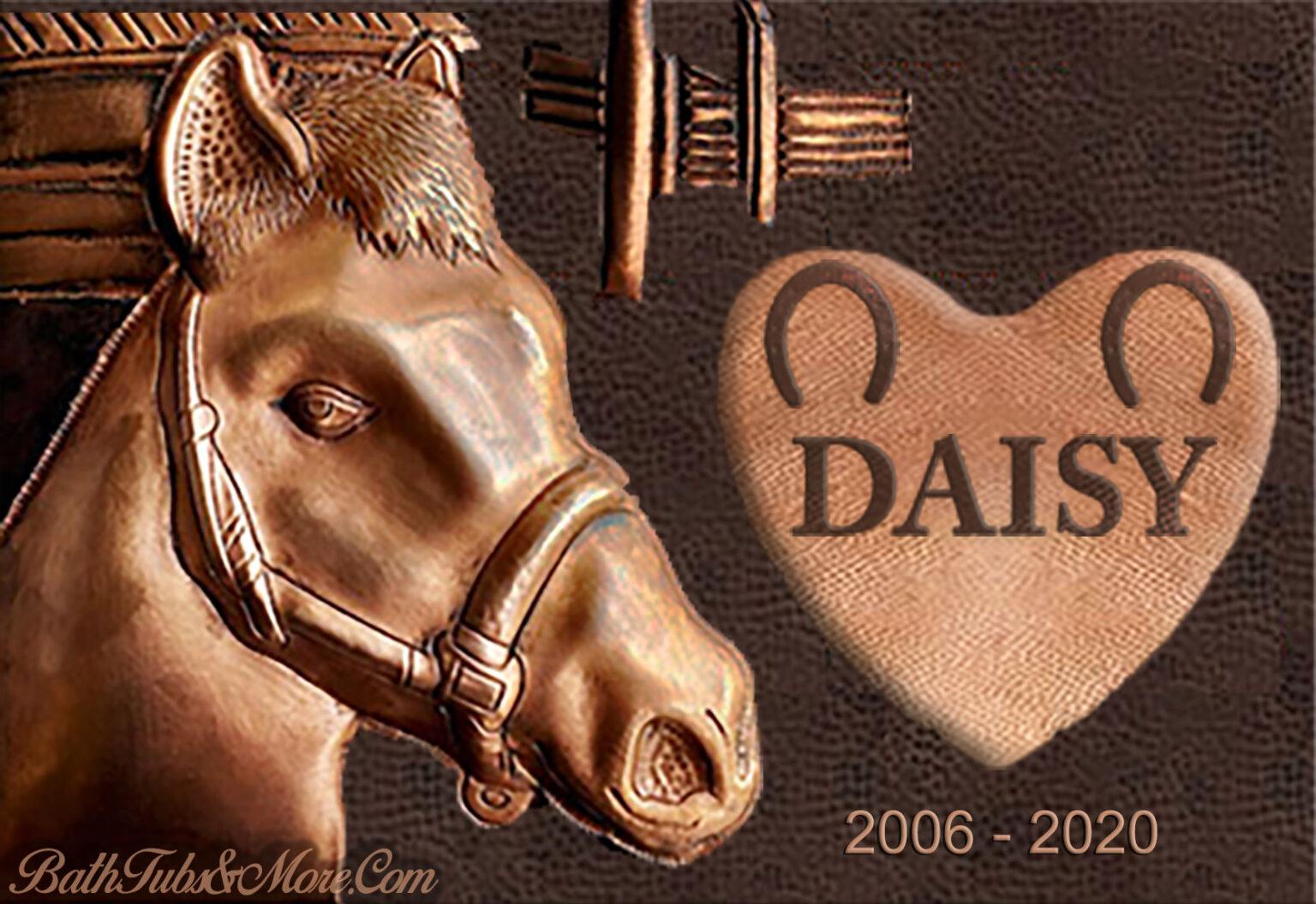 DAISY-1-1536x1056